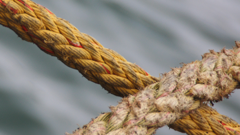 Close up of rope above water